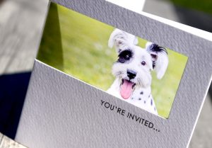 dog wedding save the date